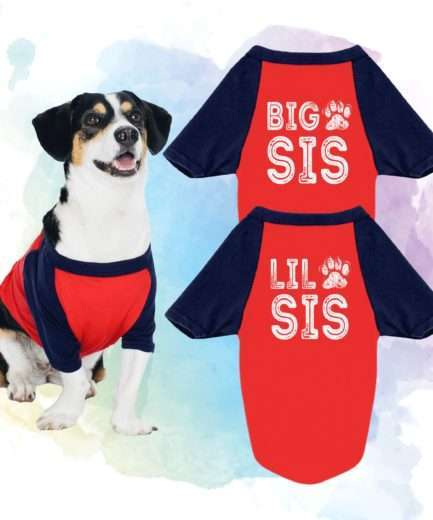 Big Sis Lil Sis Dog Shirts, Raglan, Matching Dog Shirts, Funny Dog Outfit